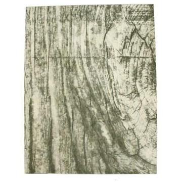 rustic-birch