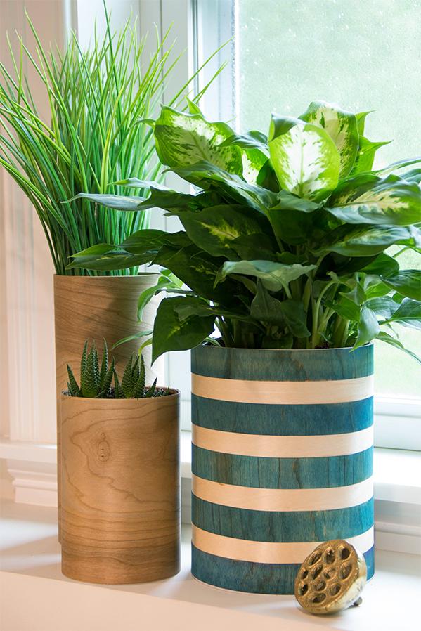 ARC Aug 18 Wood Vases