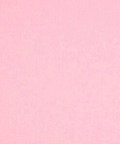 //etcpapers.com/wp-content/uploads/2020/07/ETC-12x12-CP-Candy-Pink.jpg
